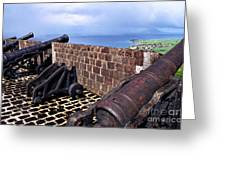 Brimstone Hill Fortress Canons Greeting Card by Thomas R Fletcher