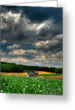 Brooding Sky Greeting Card by Lois Bryan