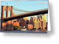 Brooklyn Greeting Card by Mitch Cat