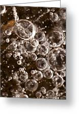 Bubbles Greeting Card by Anne Gilbert