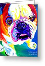 Bulldog - Stanley Greeting Card by Alicia VanNoy Call