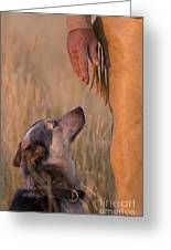 Buster And Dawg Greeting Card by Carol Walker
