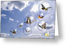 Butterflies And Bubbles Greeting Card by Tony Cordoza