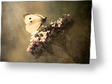 Butterfly Spirit #01 Greeting Card by Loriental Photography