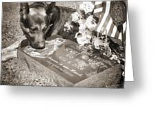 Buy A Print. Show Your Support For Reading K9 Police.  Willow Street Pictures.  Greeting Card by Darren Modricker