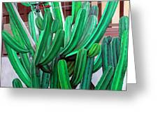 Cactus Fly By Greeting Card by Snake Jagger