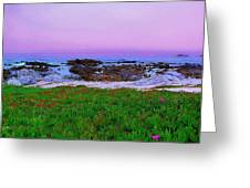 California Coast Greeting Card by Jen White