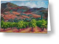 Calistoga Vineyards  Greeting Card by Deirdre Shibano