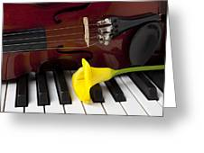 Calla Lily And Violin On Piano Greeting Card by Garry Gay