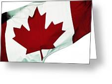 Canada Greeting Card by John Rizzuto