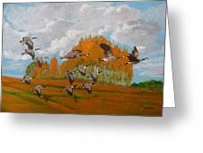 Canadian Geese Greeting Card by Richard Le Page