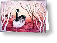 Canadian Geese Sunset Greeting Card by Connie Williams