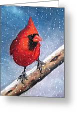 Cardinal In Winter Greeting Card by Joyce Geleynse