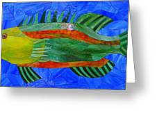 Caribbean Grouper Greeting Card by Charles McDonell