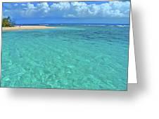 Caribbean Water Greeting Card by Scott Mahon