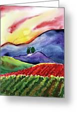Carneros Sunset Greeting Card by Amelia Hunter