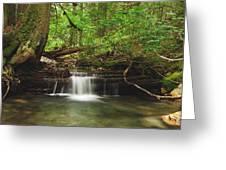 Cascade Happy Trail Greeting Card by Michael Peychich