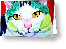 Cat - Zooey Greeting Card by Alicia VanNoy Call