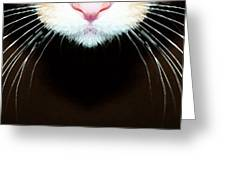Cat Art - Super Whiskers Greeting Card by Sharon Cummings
