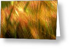 Cat Tails Greeting Card by Paul Wear