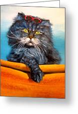 Cat.go To Swim.original Oil Painting Greeting Card by Natalja Picugina