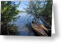 Cedar Strip Canoe And Cedars At Hanson Lake Greeting Card by Larry Ricker