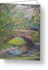 Central Park Bridge Greeting Card by Bart DeCeglie