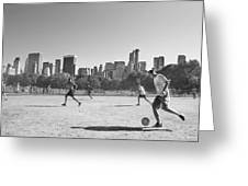 Central Park Greeting Card by Robert Lacy