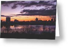 Central Park Sunrise Greeting Card by Ariane Moshayedi
