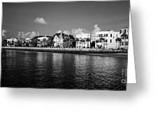 Charleston Battery Row Black And White Greeting Card by Dustin K Ryan