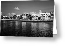 Charleston Battery Row Black And White Greeting Card by Dustin K Ryan