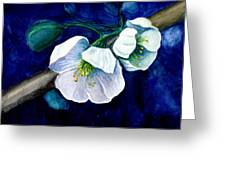 Cherry Blossoms Greeting Card by Georgia Pistolis