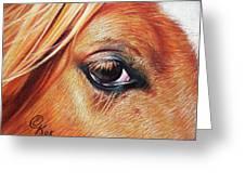 Chestnut Close-up Greeting Card by Elena Kolotusha