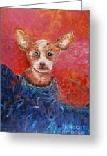 Chihuahua Blues Greeting Card by Nadine Rippelmeyer