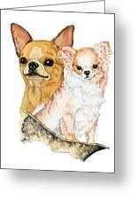 Chihuahuas Greeting Card by Kathleen Sepulveda