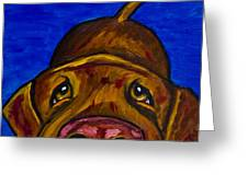Chocolate Lab Nose Greeting Card by Roger Wedegis