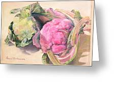 Choux Greeting Card by Muriel Dolemieux