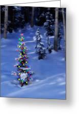 Christmas Tree In Snow Greeting Card by Utah Images