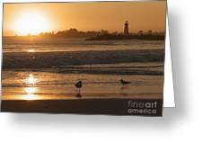 Classic Santa Cruz Sunset Greeting Card by Paul Topp