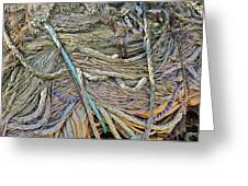 Closeup Of Fishing Nets And Ropes Greeting Card by Ruud Morijn