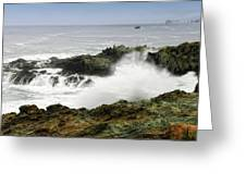 Coastal Expressions Greeting Card by Donna Blackhall