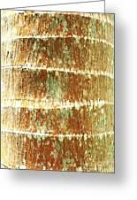 Coconut Palm Bark 2 Greeting Card by Brandon Tabiolo - Printscapes