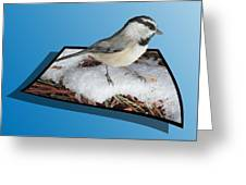 Cold Feet Greeting Card by Shane Bechler