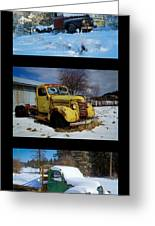 Cold Guys Greeting Card by Idaho Scenic Images Linda Lantzy
