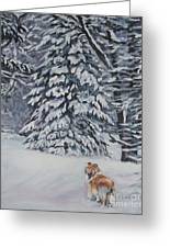 Collie Sable Christmas Tree Greeting Card by Lee Ann Shepard