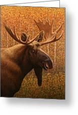Colorado Moose Greeting Card by James W Johnson