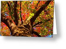 Colorful Autumn Abstract Greeting Card by James BO  Insogna