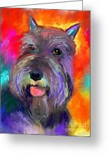 Colorful Schnauzer Dog Portrait Print Greeting Card by Svetlana Novikova