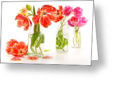 Colorful Spring Tulips In Old Milk Bottles Greeting Card by Sandra Cunningham