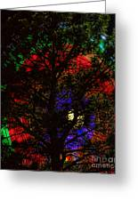 Colorful Tree Greeting Card by James BO  Insogna